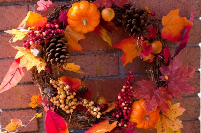 木の実や落ち葉のイメージ